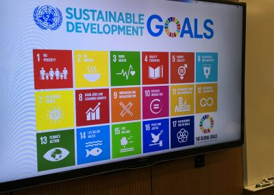 Global Sustainability Goals
